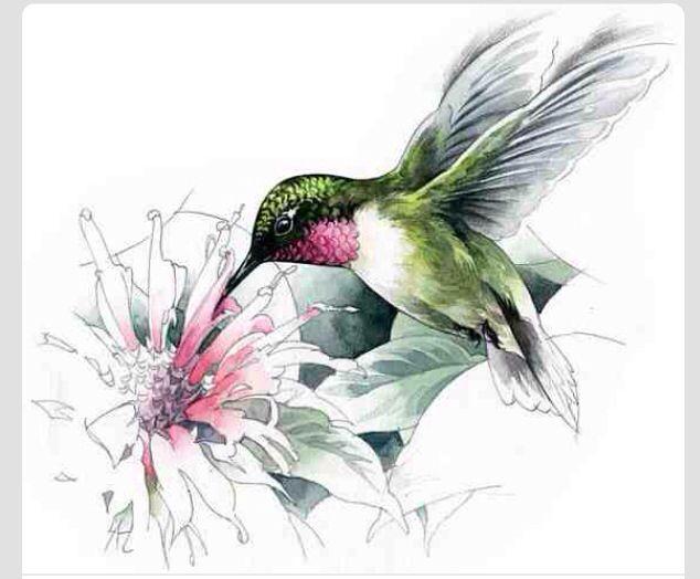 Colibrí al oleo   imágenes decoupage   Pinterest   Colibri, Pájaro y ...