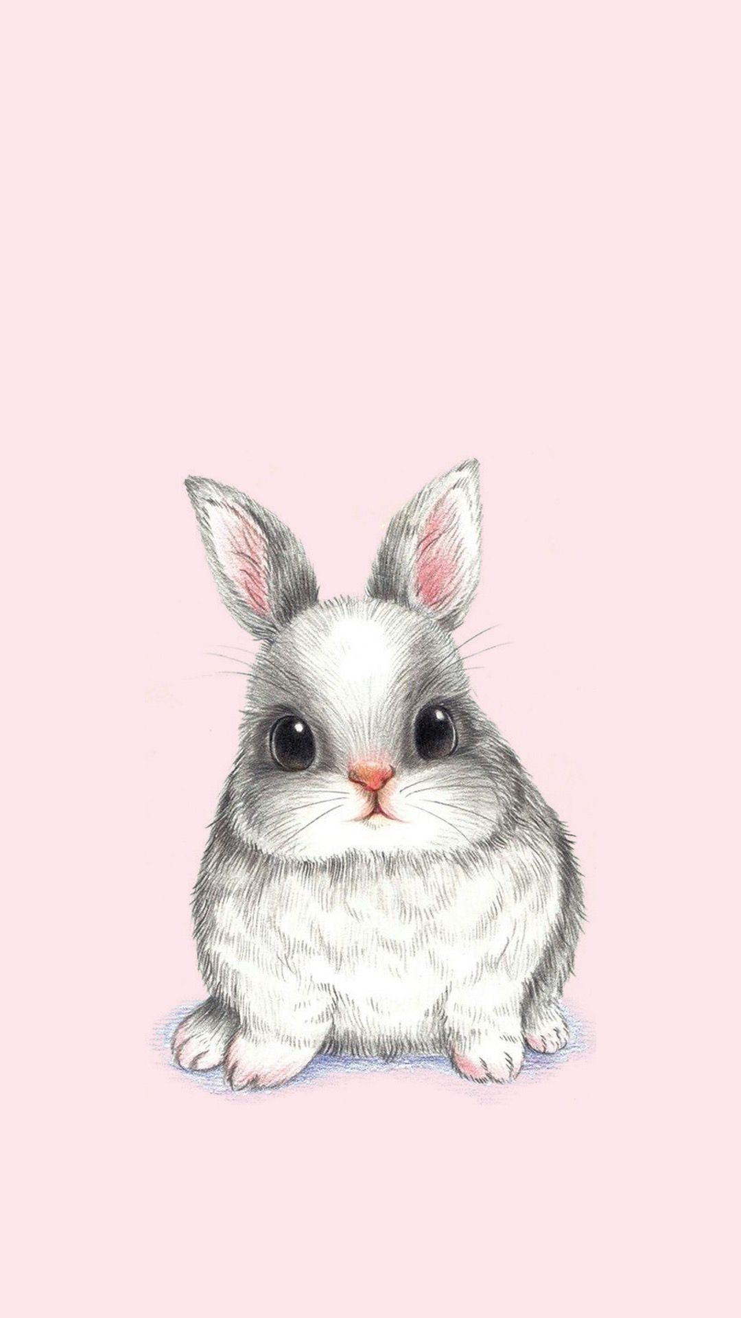 Bunny Rabbit Phone Wallpaper Bunny Wallpaper Bunny Drawing