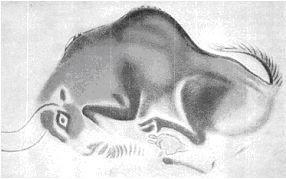 Resultado De Imagen De Bisonte Altamira Colorear Bisontes Colores Imprimir Sobres