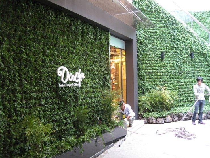 Pin de masdar jardines verticales en jardines comerciales for Muros y fachadas verdes jardines verticales