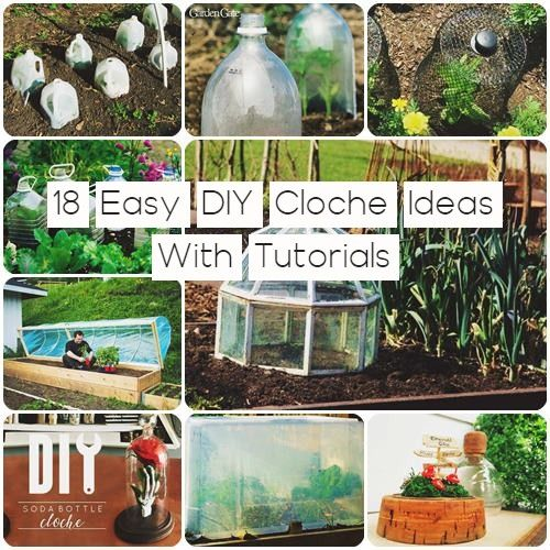 These DIY Cloche Ideas are perfect for protecting your vegetables and flower plants from frost, duck, beer, birds, and pests.