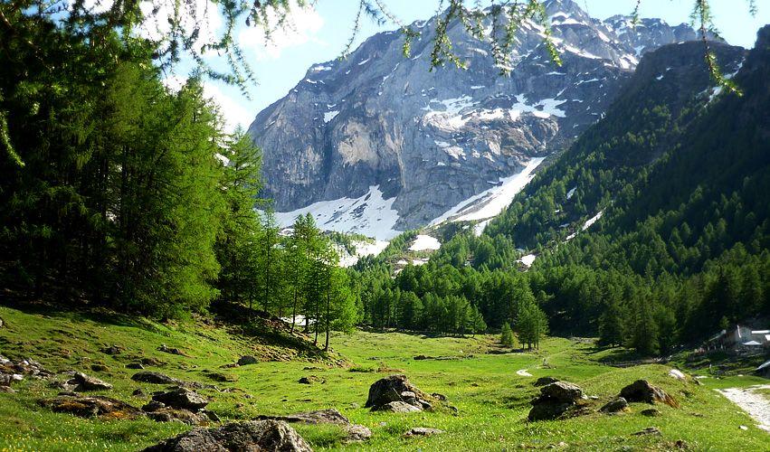 Südtirol (Foto wohlgeraten.de)