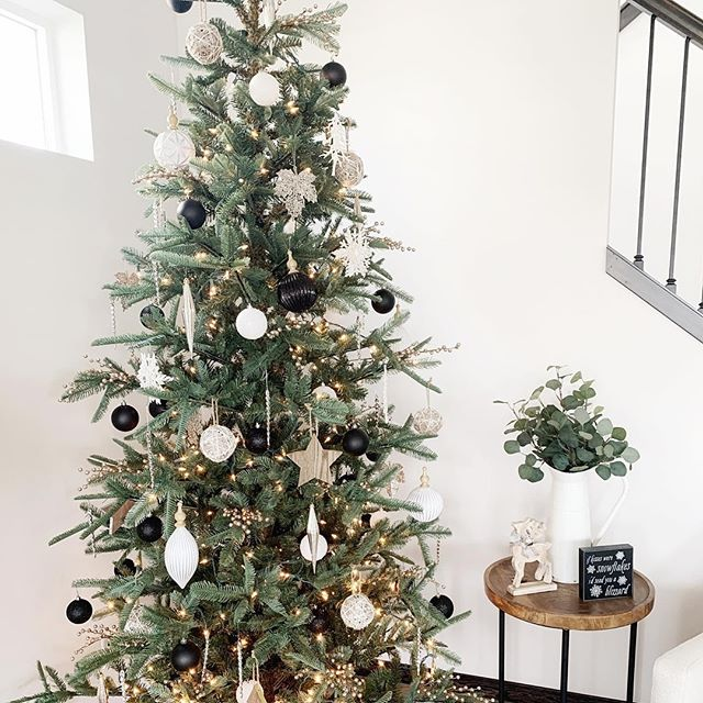 """King Of Christmas on Instagram: """"How cool does this King Noble Fir"""