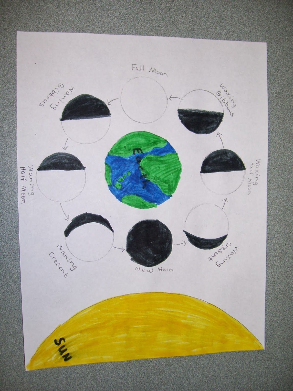 Wild About 2nd Grade Moon Phases