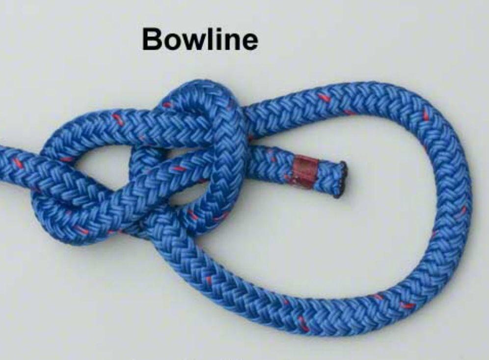 tie knots Bowline knot, Tie knots, Climbing knots