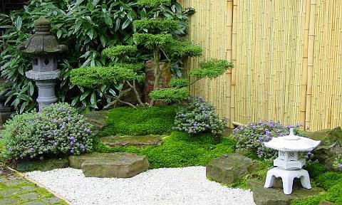 der kleine zen garten jardin asiatischer garten asia. Black Bedroom Furniture Sets. Home Design Ideas