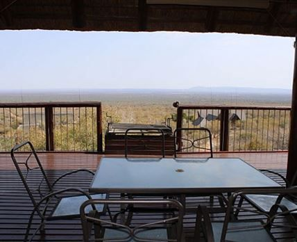 Tuskers Lodge Is Located In The Mabalingwe Nature Reserve Bela Bela Br X2f Br X2f This Self Catering House Can With Images Lodge Open Plan Living Swimming Pools