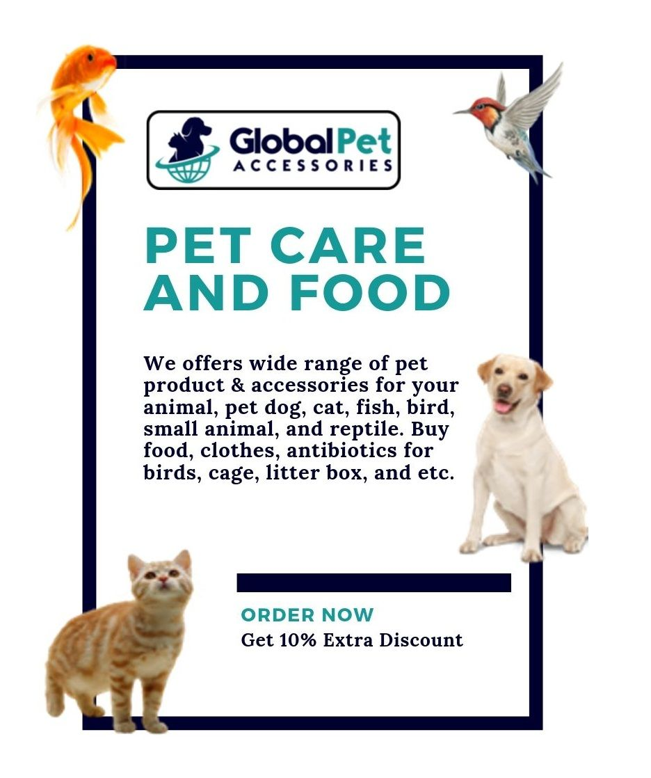 At The Global Pet Accessories You Are Sure To Find Plenty Of Cool Stuff For Your Pet If You Are In The Mood To Pamper Them Pet Accessories Pet Care