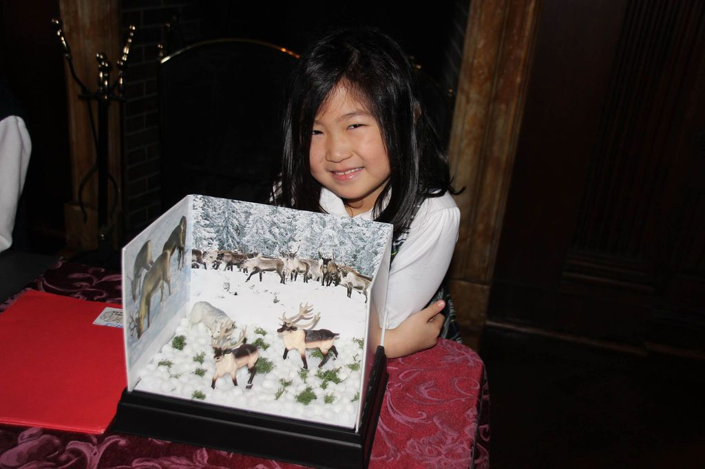 Buckley Country Day: Media - 1st grade Polar Animal project featuring Elizabeth's reindeer diorama. Great job Ebi! Thank you Pinterest and Michael's!