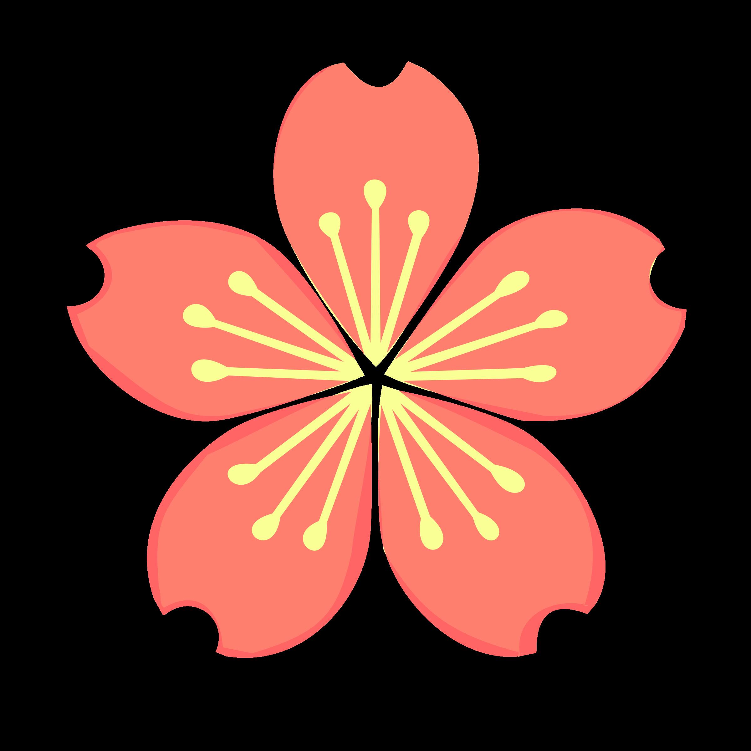 Cherry blossomloading spinner Cherry blossom, Lunar new