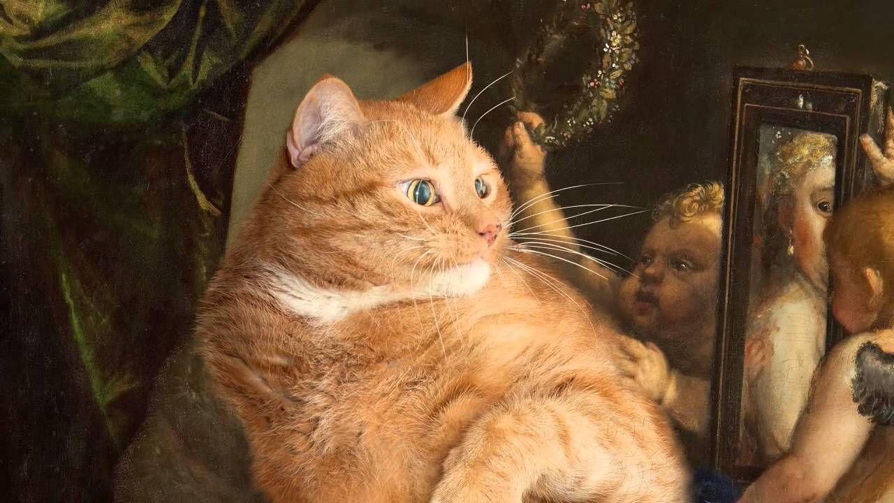 Titian Venus Selfie By Fat Cat Art