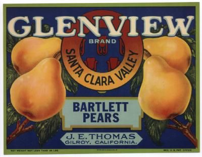 GLENVIEW Vintage Gilroy Pear Crate Label