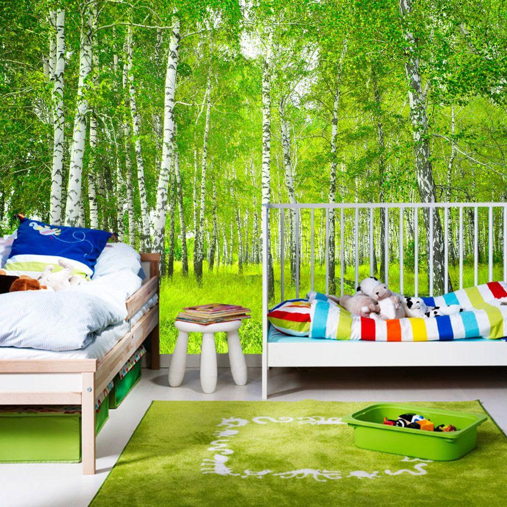 fototapete wald vlies birkenwald sonniger birkenwald in den gr en 200x140cm 300x210cm. Black Bedroom Furniture Sets. Home Design Ideas