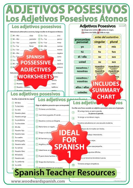Spanish Possessive Adjectives Worksheets Adjetivos Posesivos