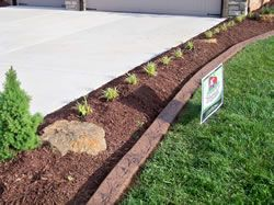 Pin By Tracy Brewer On Backyard Inspiration Driveway Landscaping Driveway Edging Backyard Landscaping