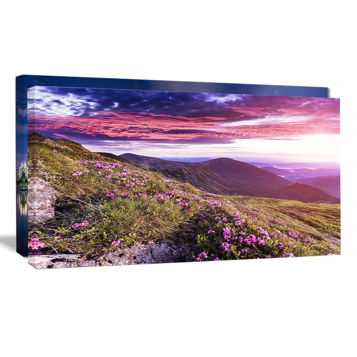 Rhododendron Flowers in Hills - Landscape Photo Art Print