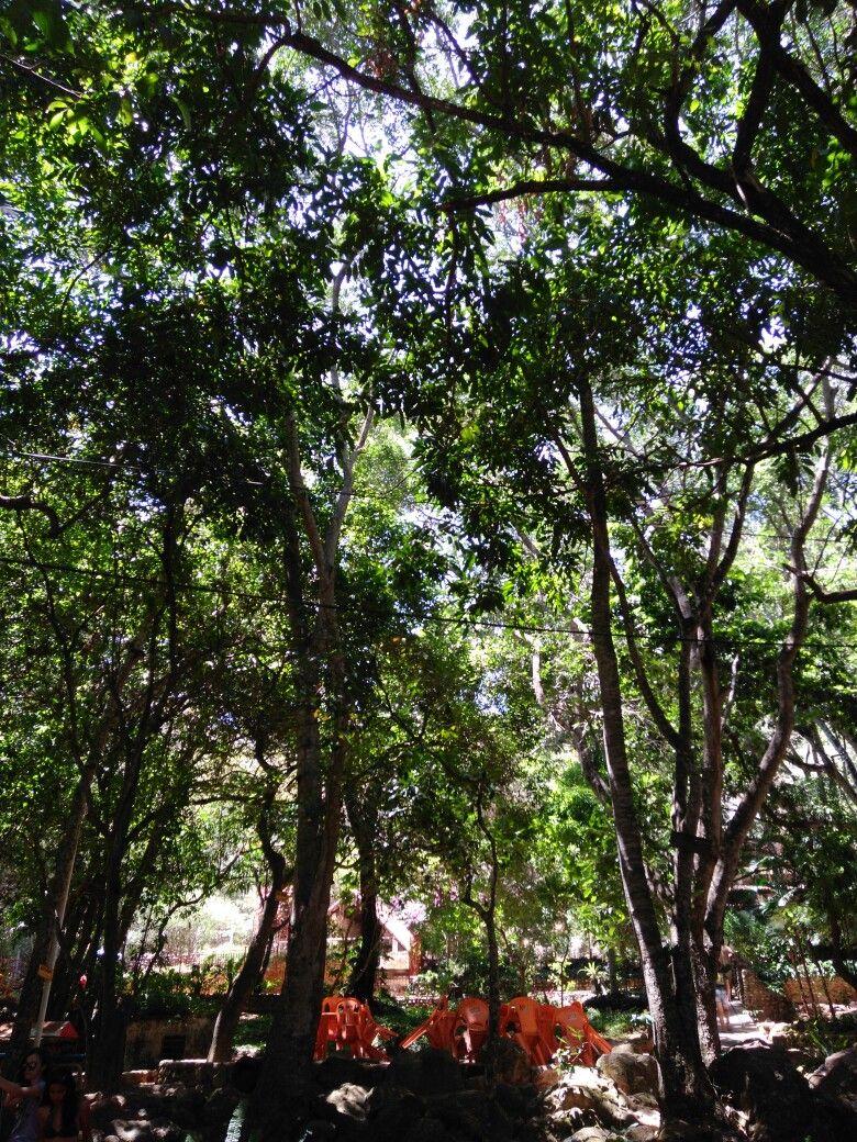 Balneário de caldas - Ceará