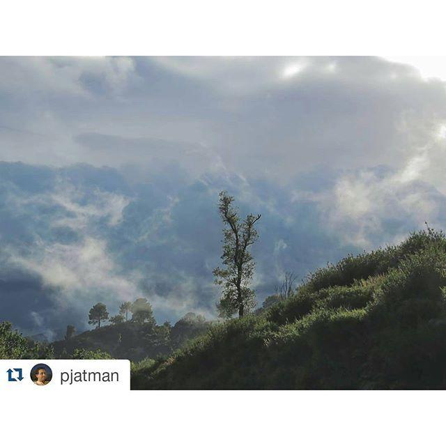 Estos días de #niebla ☁ y llovizna ☔ nos hacen descubrir #Galicia  desde un punto de vista diferente  #SienteGalicia ➡ Fotografía  de @pjatman  #Galicia #RiasBaixas #GaliciaCalidade