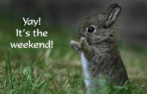 Yay! It's the weekend!