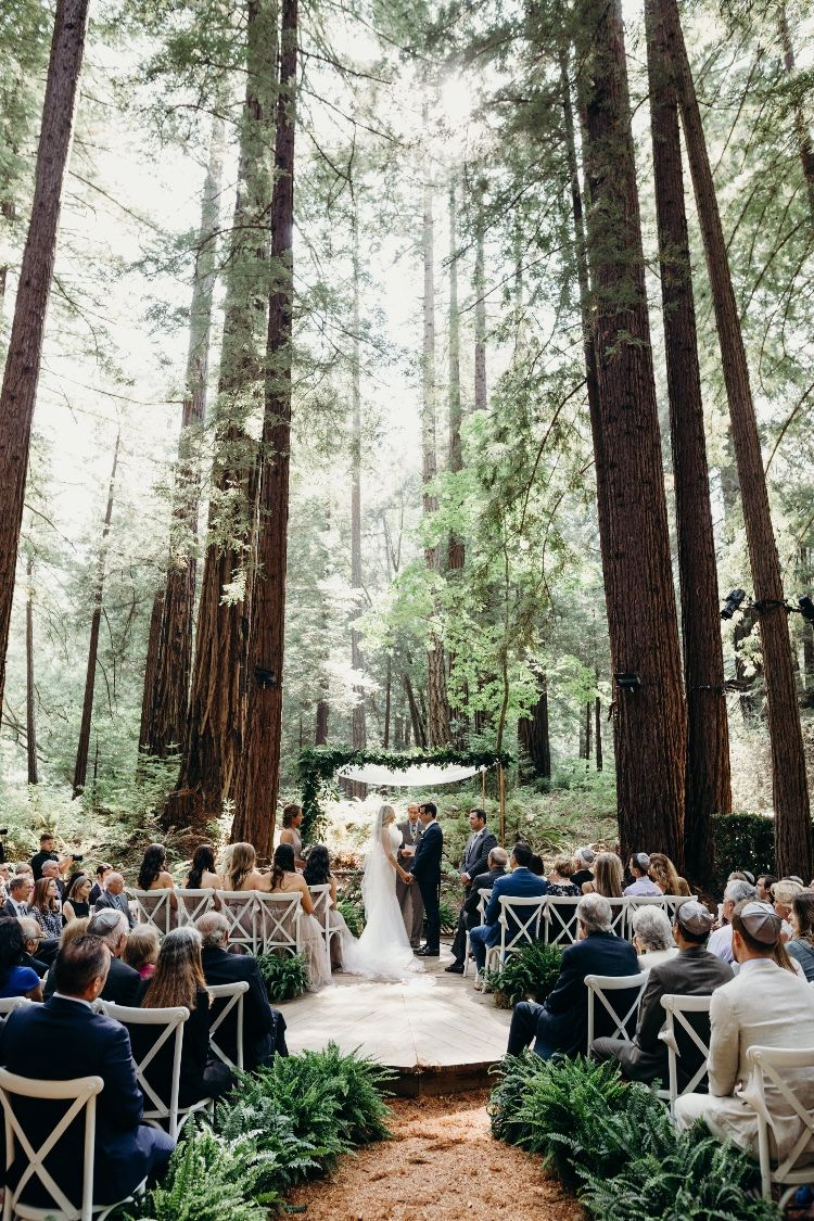 Modern Redwood Forest Wedding At The Island Farm San Gregorio Justine And Keith modern redwood forest wedding at the island farm