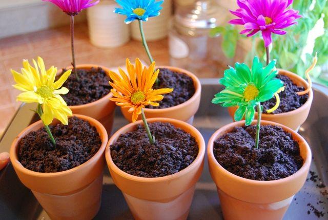 Pinterest & Springy Flower Pot Desserts