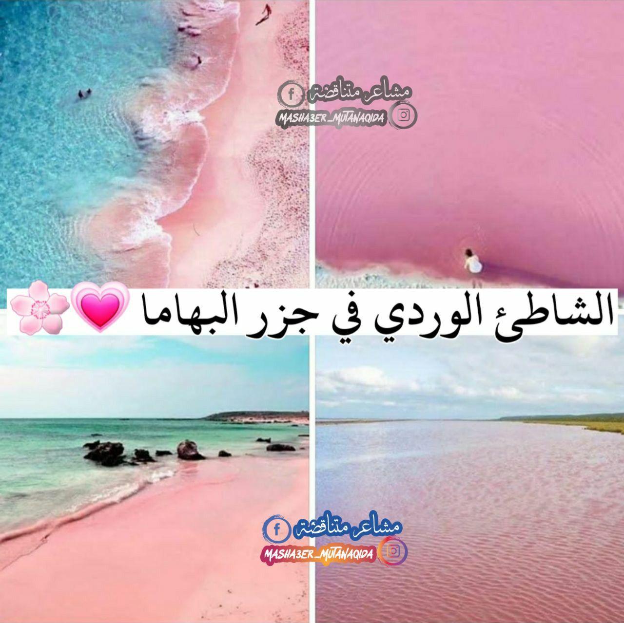 الشاطئ الوردي في جزر البهاما Instagram Movie Posters World