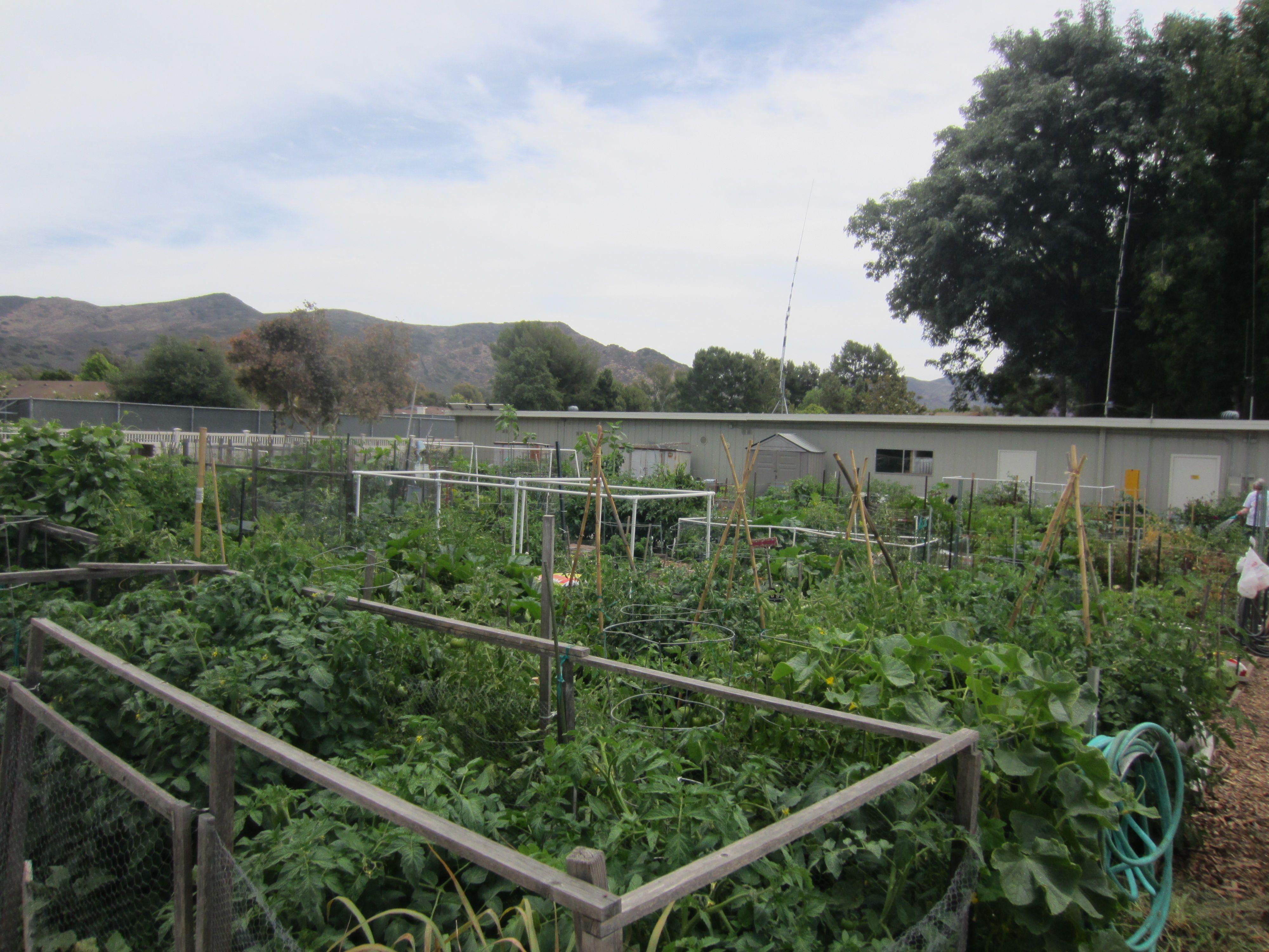 Leisure village camarillo community garden httpwww