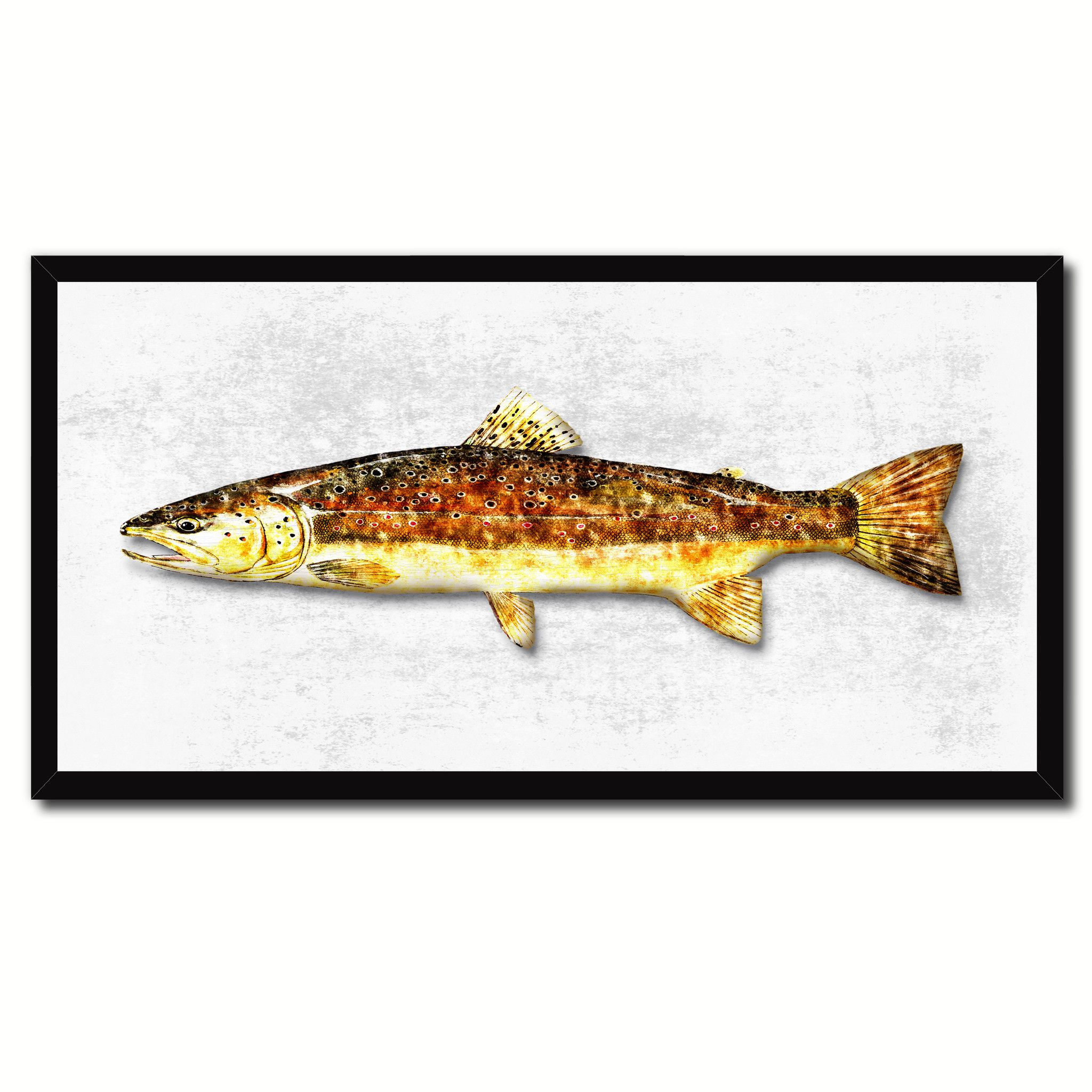 Nautical gifts for the home - Brown Trout Fish Art White Canvas Print Picture Frames Home Decor Nautical Fisherman Gifts