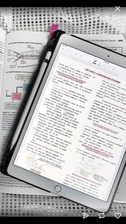 study | study | studyblr | Notes | Laptop | Books | school | coffee ... | Studyblr notes, School study tips, Study notes
