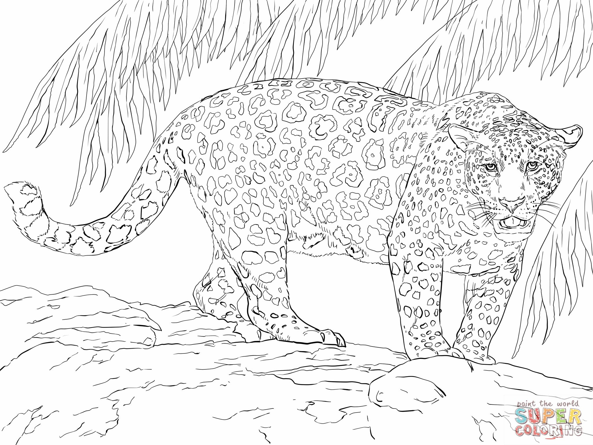 Great Jaguar Coloring Online Super Coloring Animal Coloring