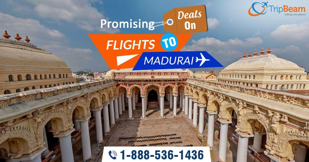 Cheap Flights Deals & Airline Tickets Online!! Book low airfare flight tickets to Madurai at Tripbeam. Book Now!  For more information: Contact us at: 1-888-536-1436 (Toll-Free), info@tripbeam.ca.  #TravelToMadurai #CheapFlights #CheapFlightsDeals #FlightDeals #VacationinMadurai #travel #touristsdestinations #visitMadurai #TravelDeals #FlightBookingOnline