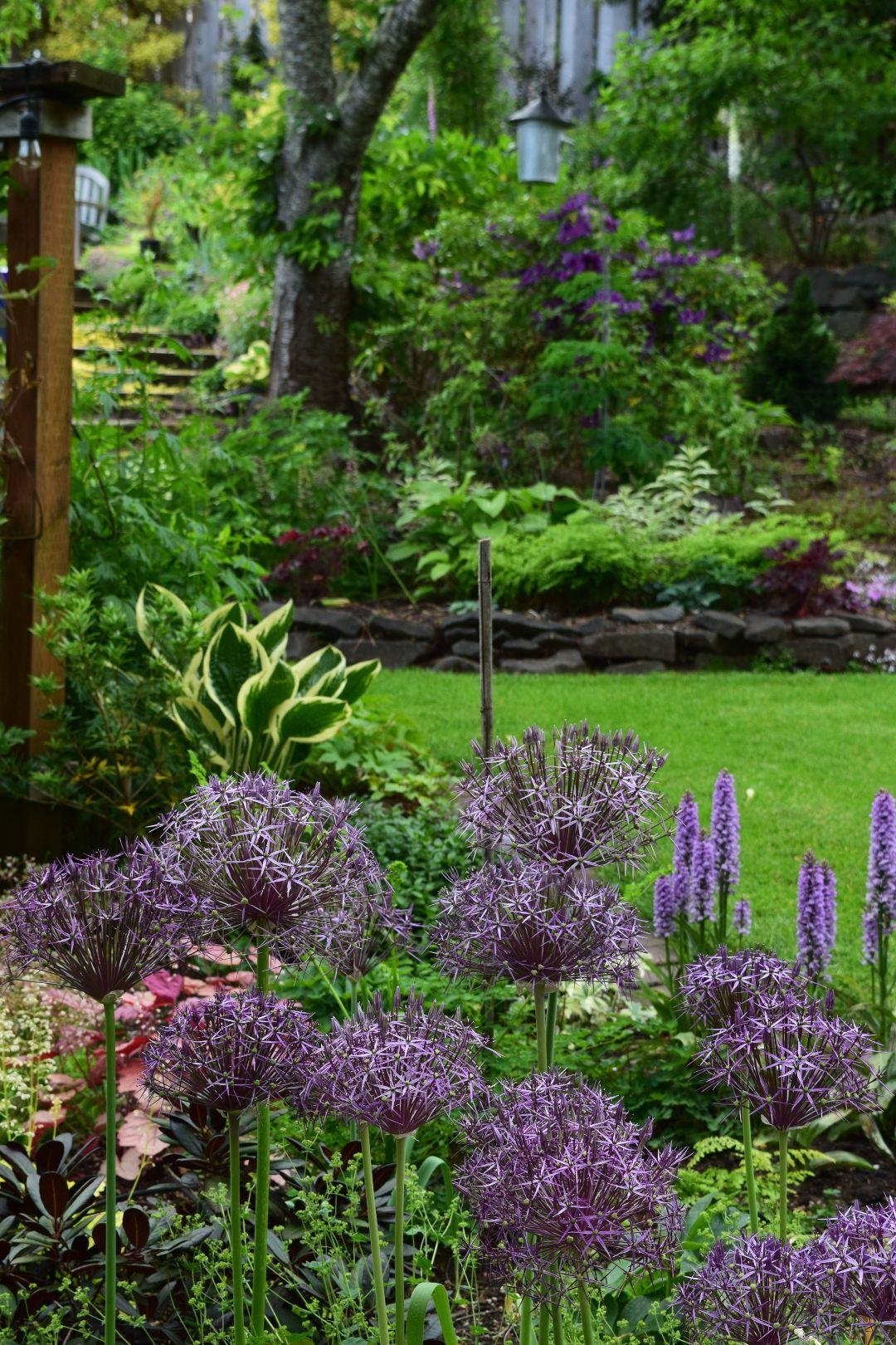 A Look Back At The Garden Beautiful Gardens Sloped Garden