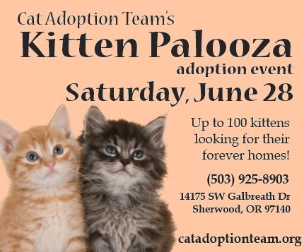 Kitten Palooza adoption event June 28 CAT's shelter in