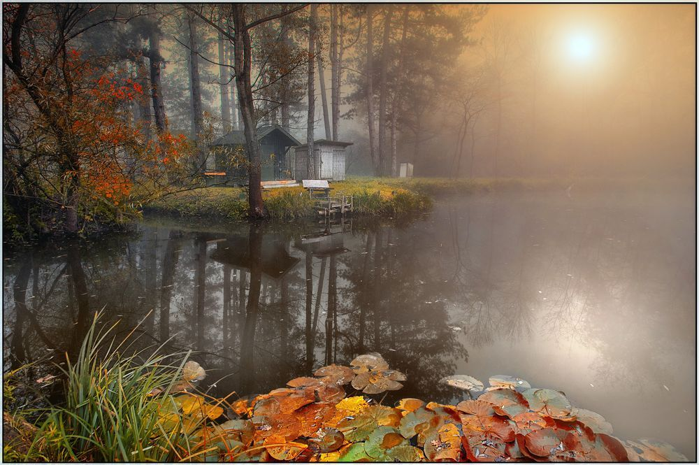 Late Autumn lights Photo by Gabor Dvornik -- National Geographic Your Shot