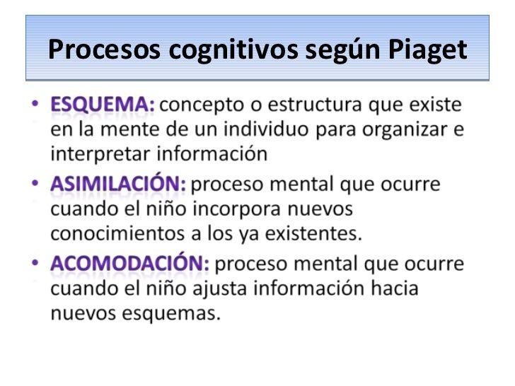 Analizamos Los Procesos Cognitivos Según Piaget Que Son