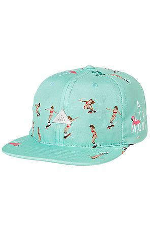 The Skatebirds Snapback Hat in Mint by Altamont use rep code: OLIVE for 20% off!
