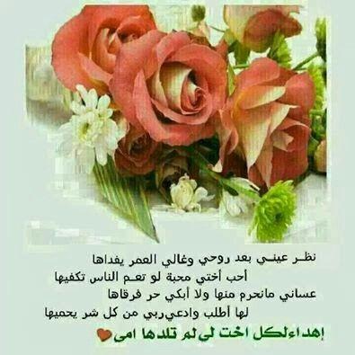 اهداء لكل اخت م Flowers Rose Plants