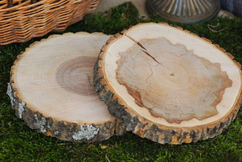 Image 1 Wood Slices Tree Trunk Slices Tree Branches