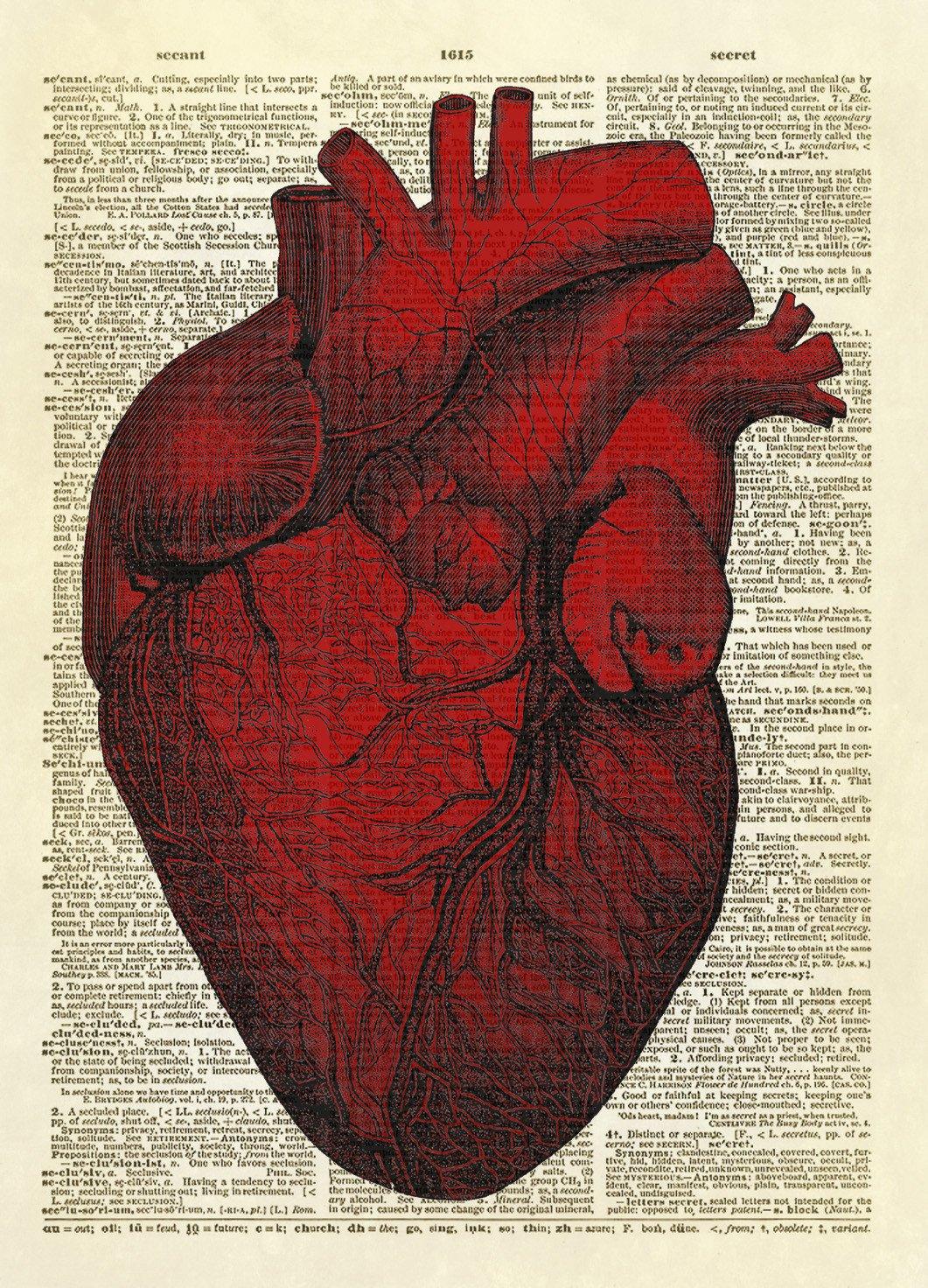 Human Heart Dictionary Art Print | Human heart, Dictionary art and ...