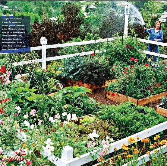 Vegetable Garden Design, Small