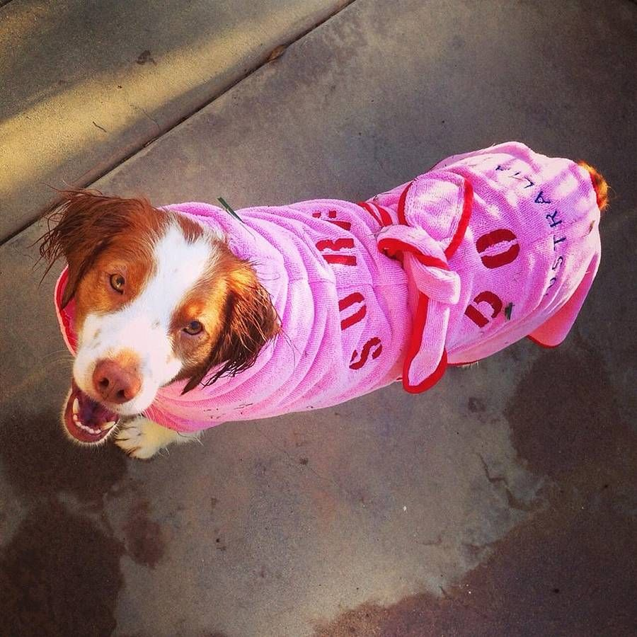 Microfibre Dog Dressing Gown Perfect For Drying Your Dog After A