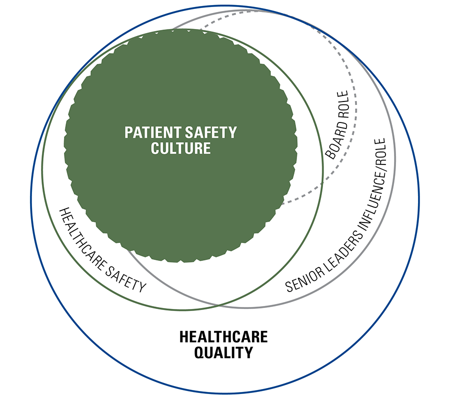 Patient Safety Culture Bundle For Ceos And Senior Leaders In 2020 Patient Safety Healthcare Leadership Healthcare Quality