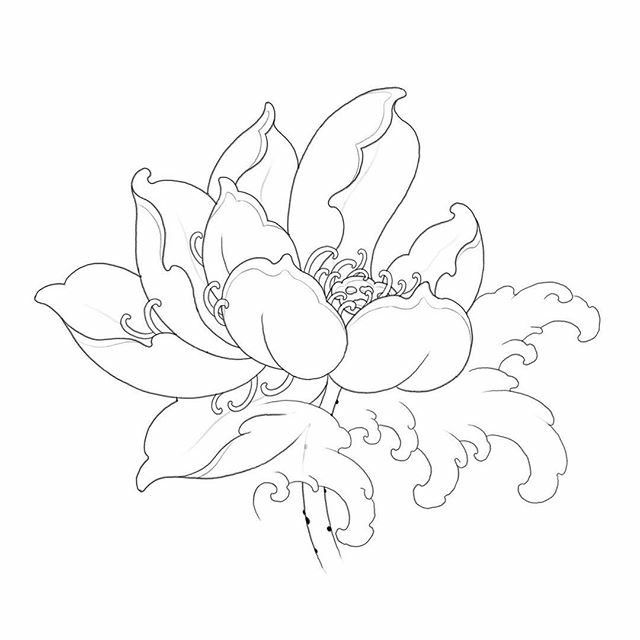 Pin de Carolin Ellwood en tattoo me   Pinterest   Crisantemos ...