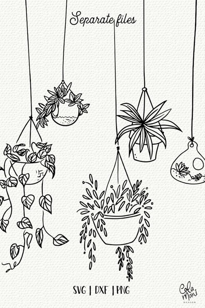 Hanging Plants SVG, Hand Drawn Clipart, Pots, Terrarium, Cactus, Succulents, Spring, Garden, Svg,Silhouette Cameo Cricut Digital