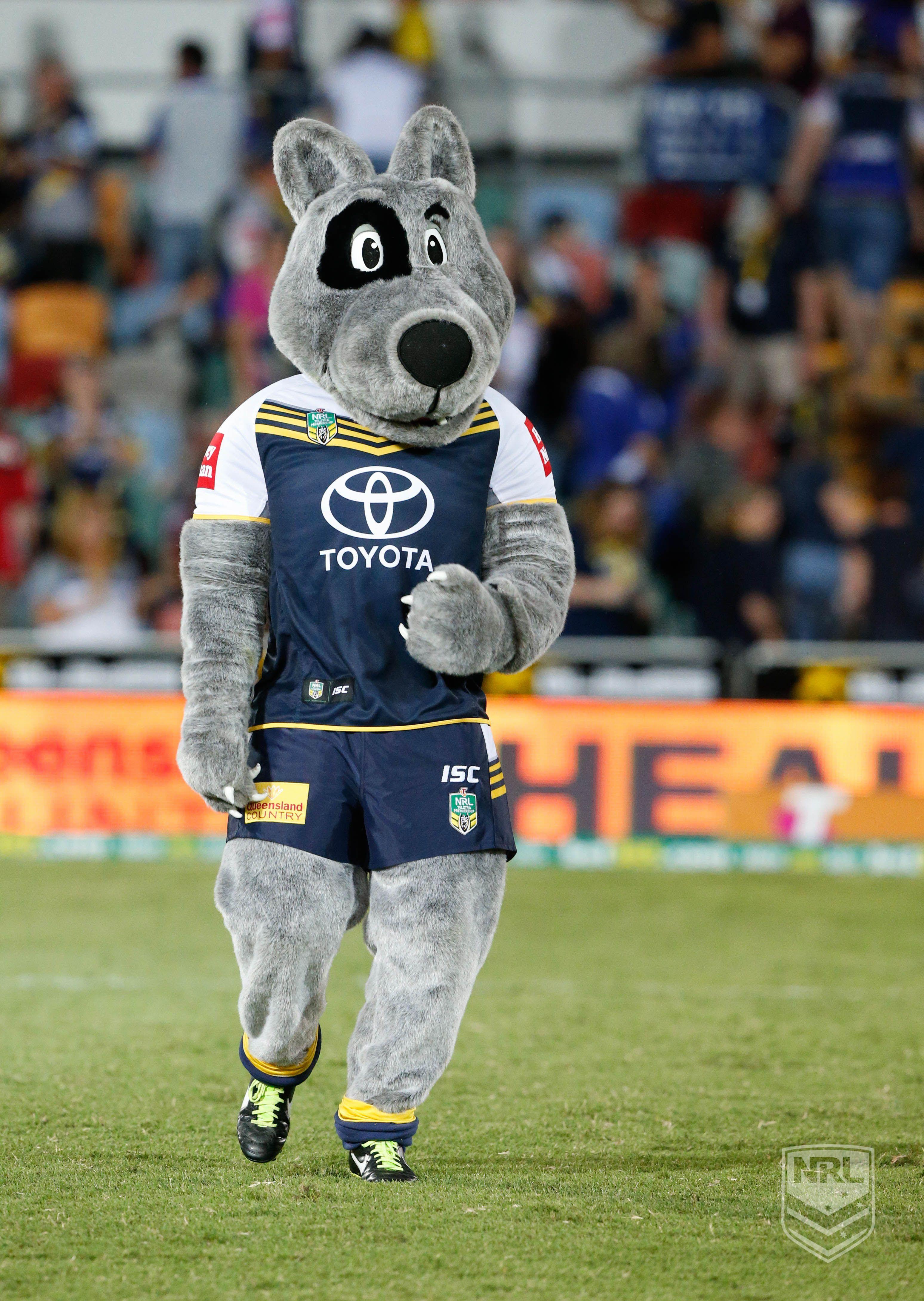 North Queensland Cowboys Mascot Mascots Pinterest