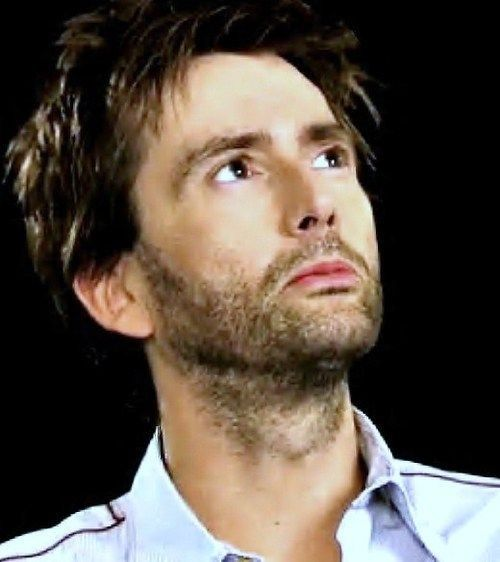 Pin by Donna Chaitovitz on anything David Tennant Pinterest - law and order svu presumed guilty