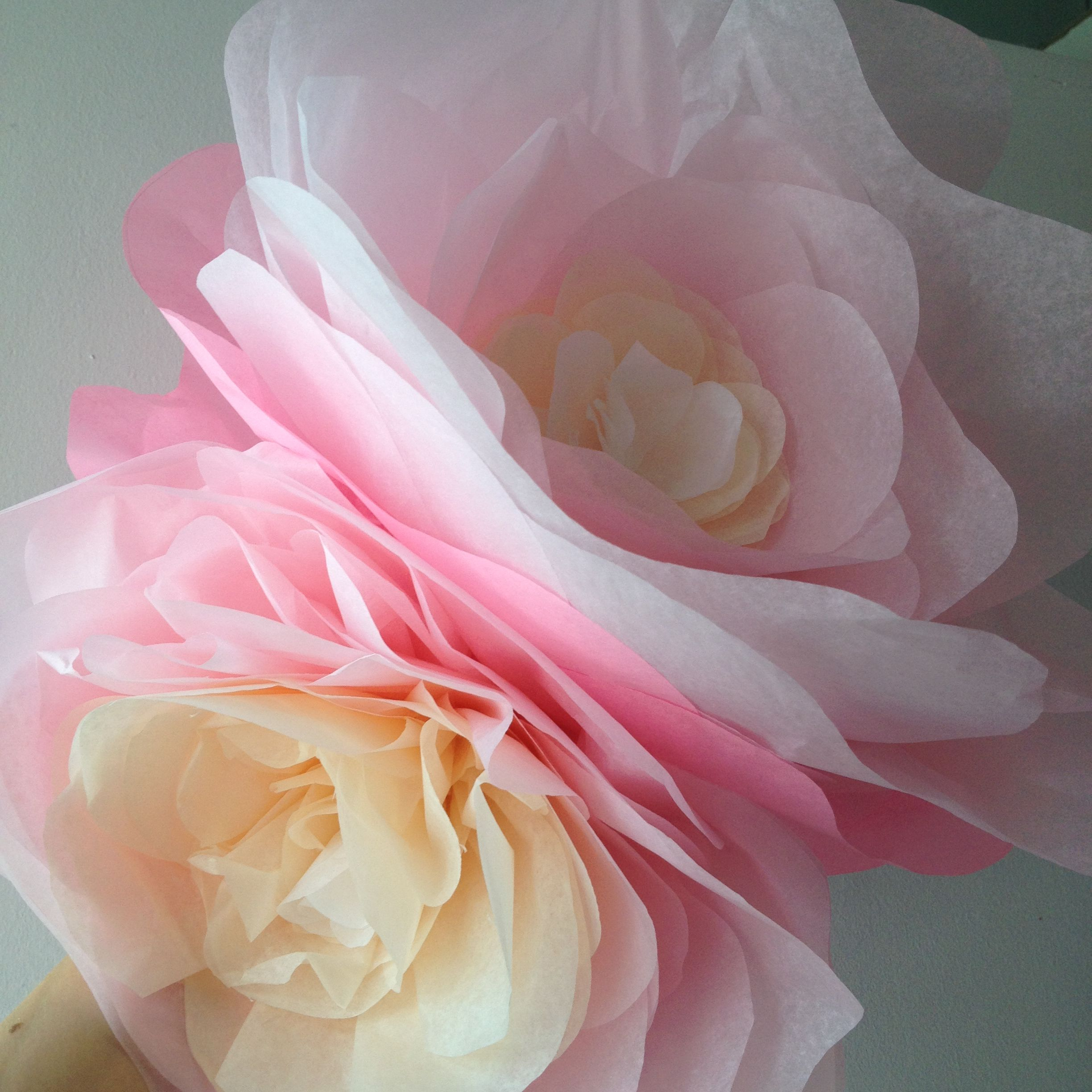 Paper flowers made out tissue paper colours white cream paper flowers made out tissue paper colours white cream mightylinksfo