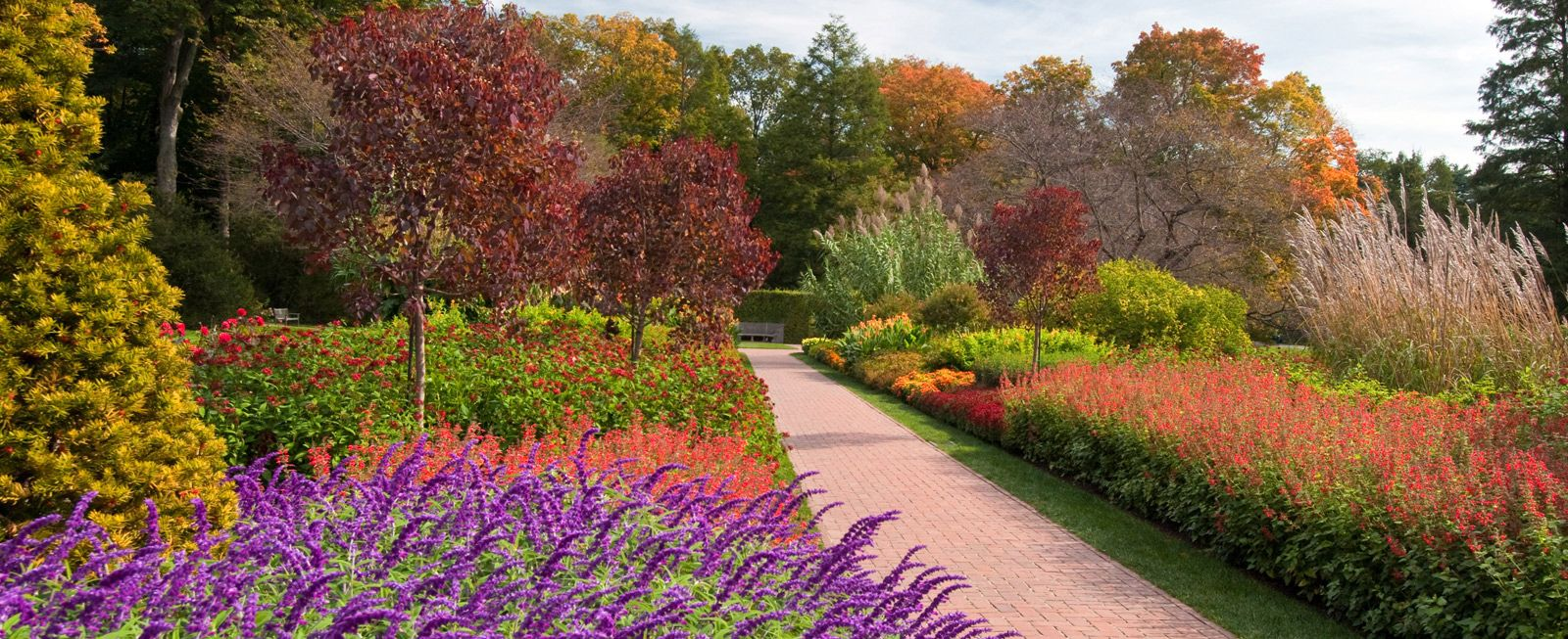 Longwood Gardens | Minication to Philly | Pinterest | Longwood ...
