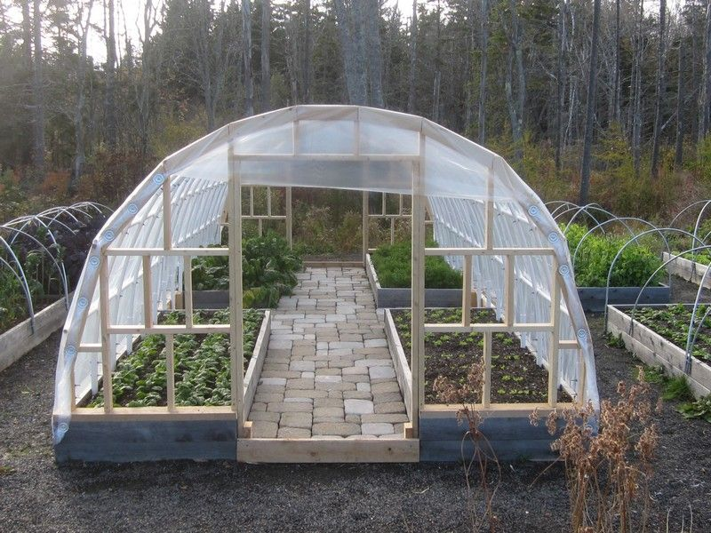 Diy Greenhouse Dream Homes Diy Greenhouse Small