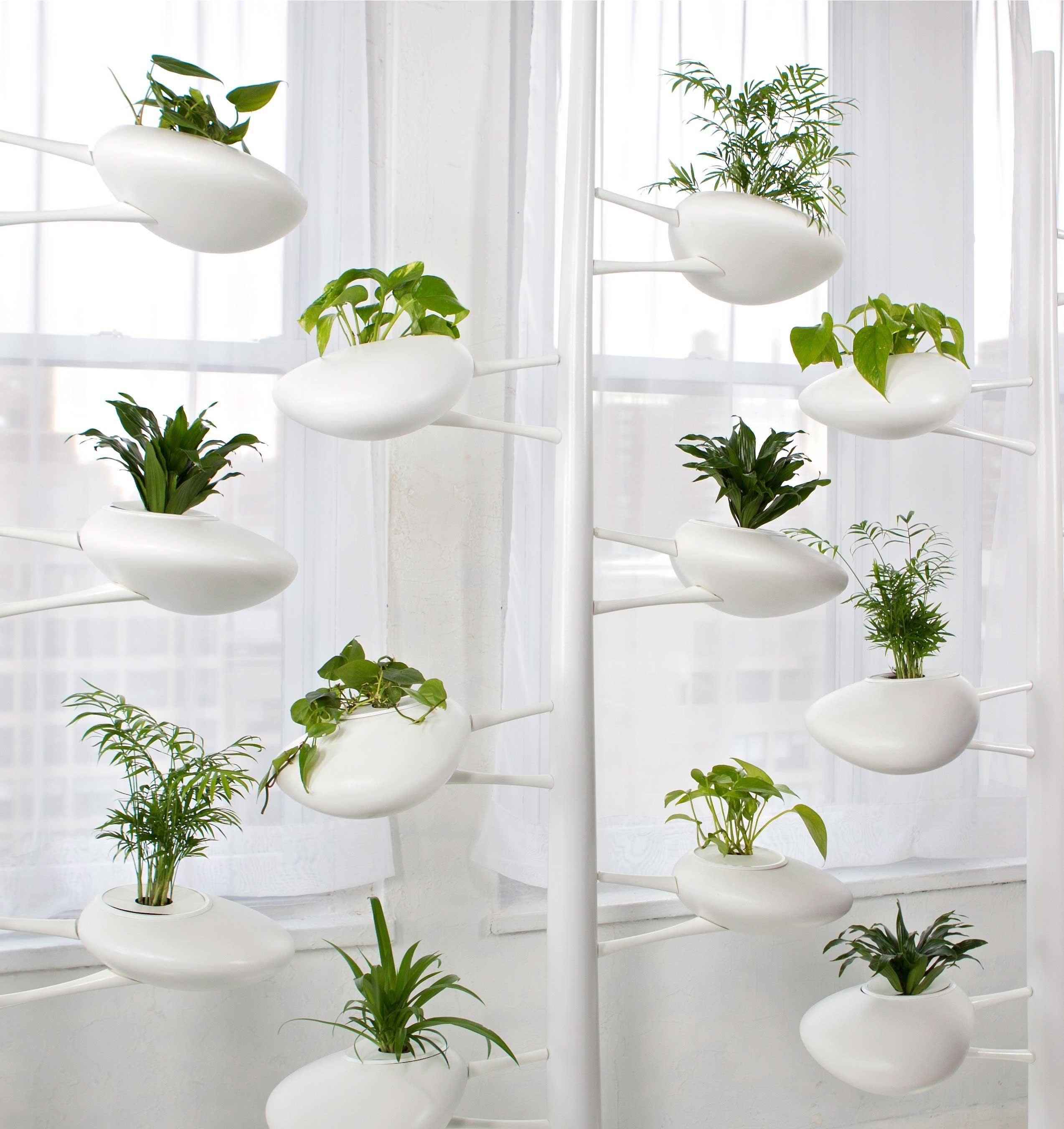 Moderne Hydrokultur Systeme für Haus und Garten Haus dekoration ...